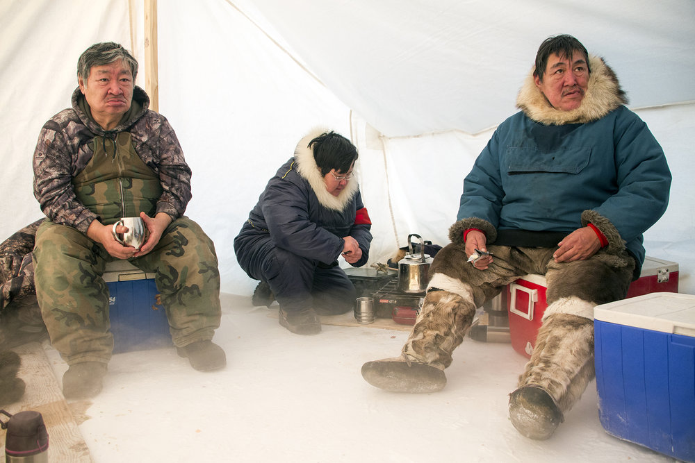 Canadian Inuit rangers set up a heating tent and prepare a lunch of fresh Arctic char, Hall Lake, Nunavut, Canada.