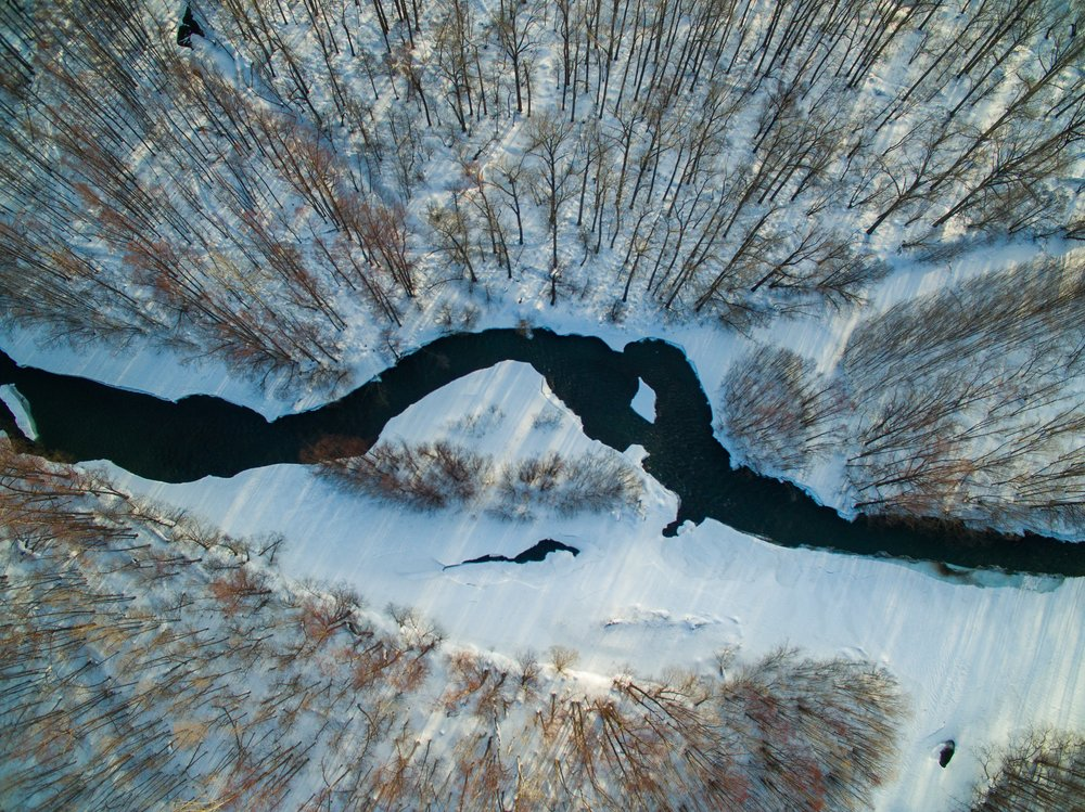 An aerial video of the Kamchatka boreal forest and river. Photo: Karim Iliya.