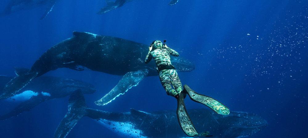 karim-iliya-dance-with-whales.jpg
