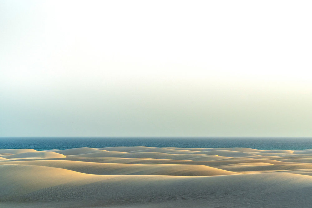 The rolling sand dunes at Zaheq on Socotra's south coast meet the Indian Ocean. These dunes, formed by strong coastal winds, seem to go on forever. We even found a piece of ancient pottery in-between two of the dunes, as at one time this very well have been underwater.