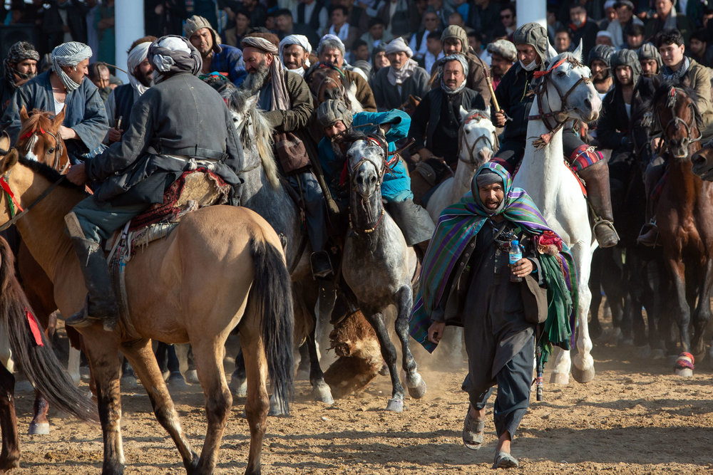 The game of Buzkashi is a traditional game placed in Afghanistan and other Central Asian countries on horseback. Riders compete to carry a decapitated calf or goat into a goal zone. The referee can be seen running away from the stampede of horses after dropping the beef in the central circle. The winner is the horseman able to carry the beef back into the centre of the circle. Balkh Province, Afghanistan.