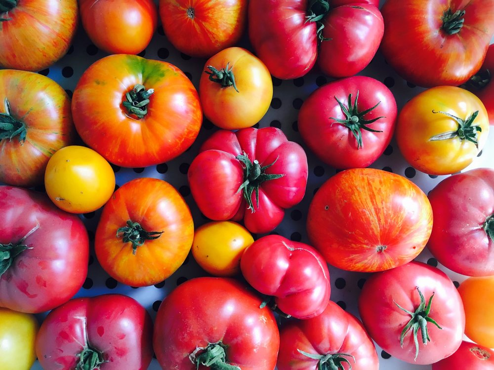 we support local farms  in fact, we have our own micro farm so we can grow the best produce possible for the best tasting food  that includes the best heirloom tomatoes for the best BLT ever