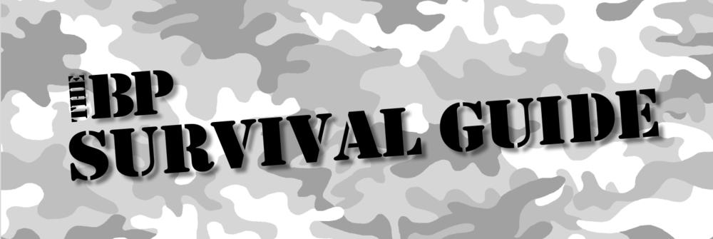 BP survival guide_pic.png