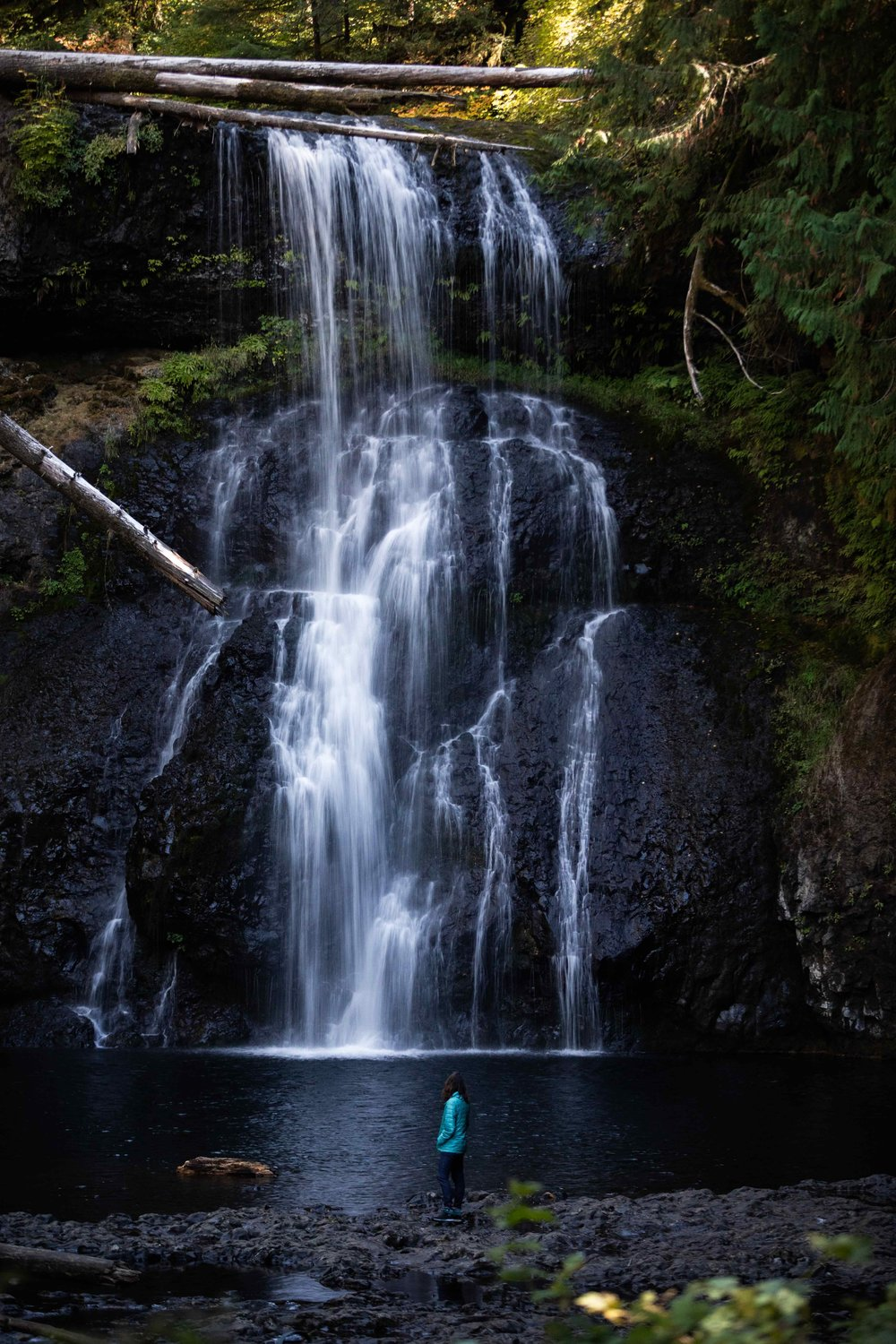 Folland Photography at Silver Falls State Park