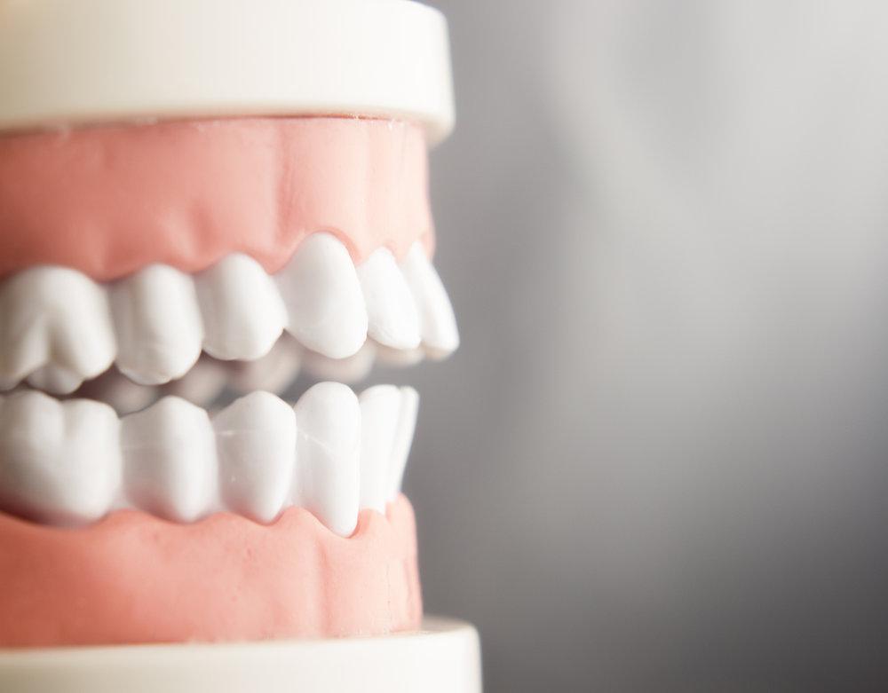 Dr. Julie Babcock   Holistic Dentistry