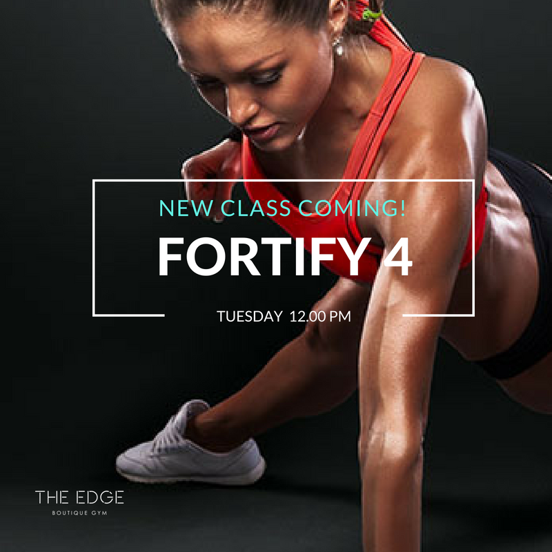 Fortify 4 ( All Levels )  - This Class is perfect for Toning your abs, butt, legs and arm. Sculpt your dream body with