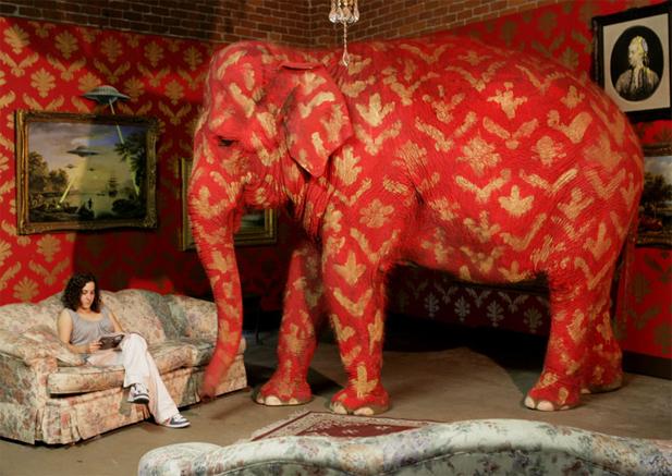 Bansky_Elephant-web2.jpg