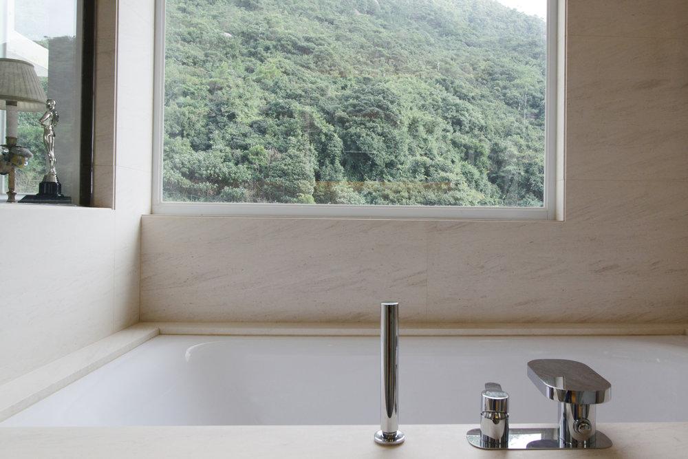 Master Bathroom | Walk-in shower and bathtub looking onto Mount Butler.