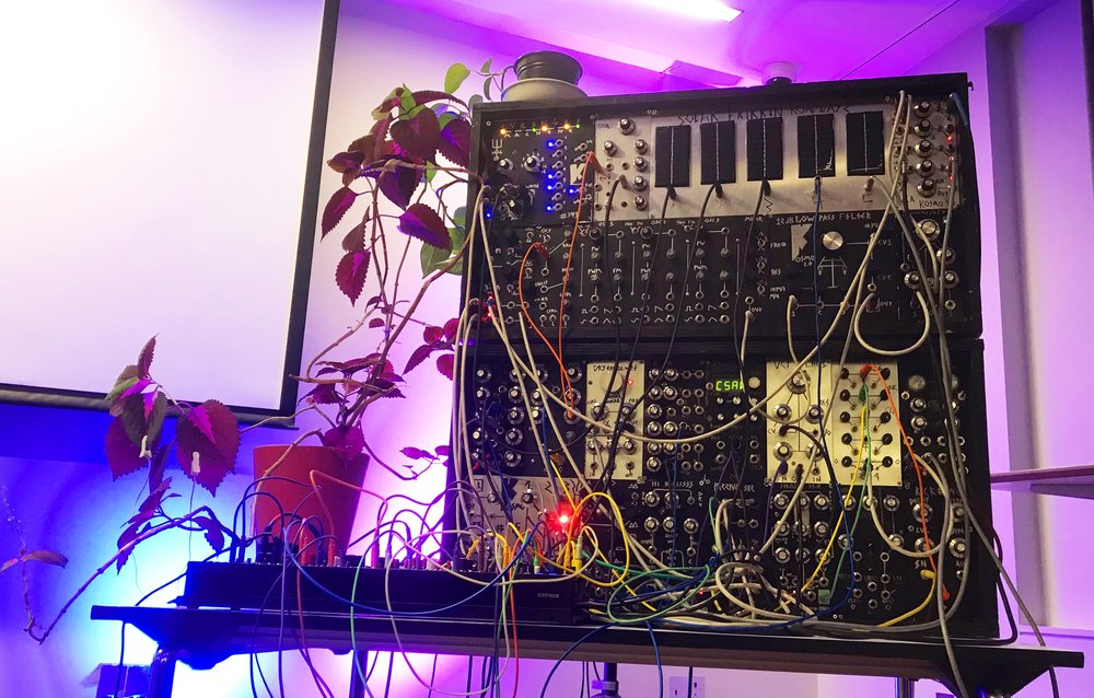 A couple of cabinets of my modular, chilling out with a plant in the photographers gallery at oxford street, London.