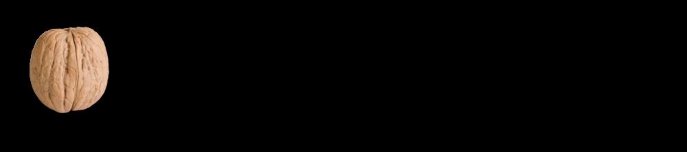 brainpool logo.png