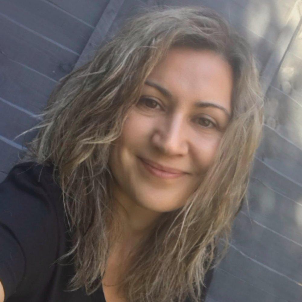 NATS - Dr. Carolina Sanchez Hernandez,Smart Transport/Smart Technologies Expert