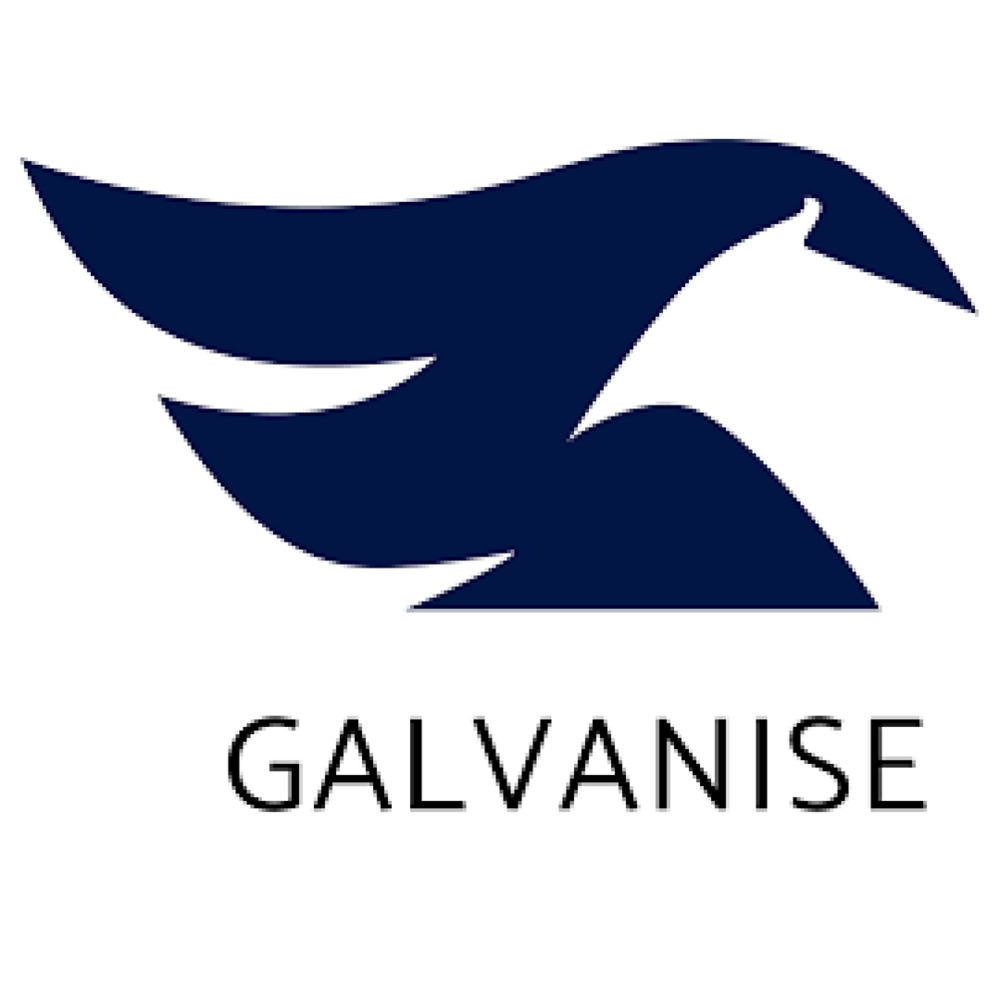 Galvanise.png