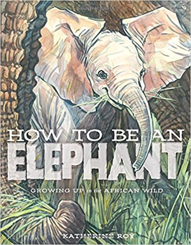 How To Be An Elephant - A nonfiction picture book? Love it. Informative and Beautiful are words that I'd use to describe this gem. The details and illustrations come together to make learning about elephants seamless and enjoyable.