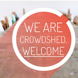 Co-founder and head of brand for CrowdShed