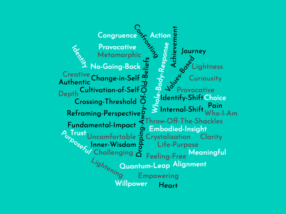 Word cloud containing coaching related words, including 'Authentic, Heart, Embodied Insight, Journey, Internal-Shift and Identity'