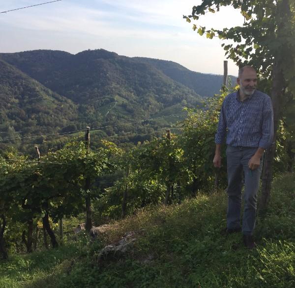 Ernesto among his vines