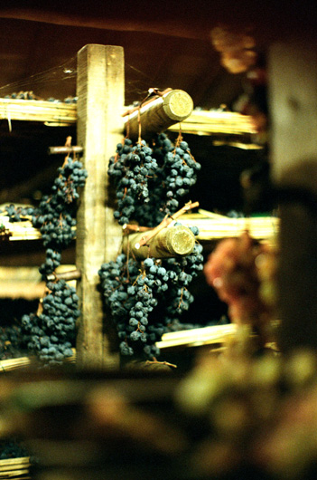 pacina_dried_grapes_4.jpg