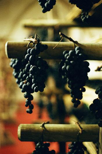 pacina_dried_grapes.jpg