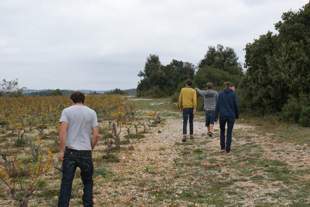 Languedoc37.JPG
