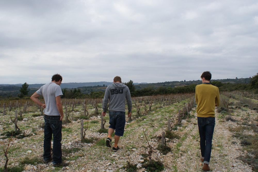 Languedoc45.JPG