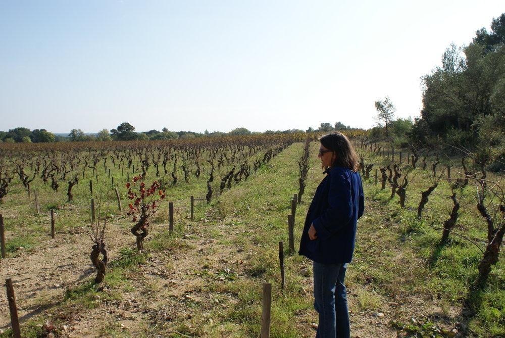 Languedoc94.JPG