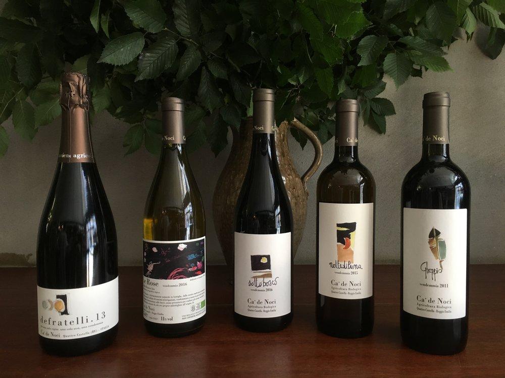 Ca de Noci Wines
