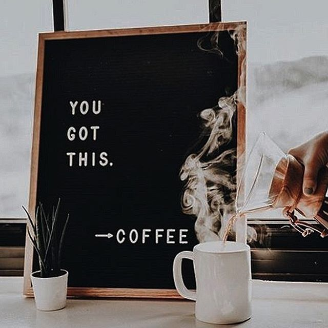 We are back and ready to GO...with a little help from coffee! ☕️ |💭#LabsLoves #LabsWorldwide 💭|