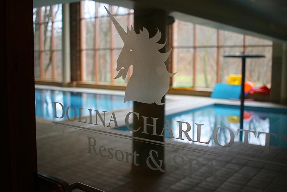 LOGO: På døren inn mot bassenget kan du se hotellets logo. Foto: Hedda Bjerén