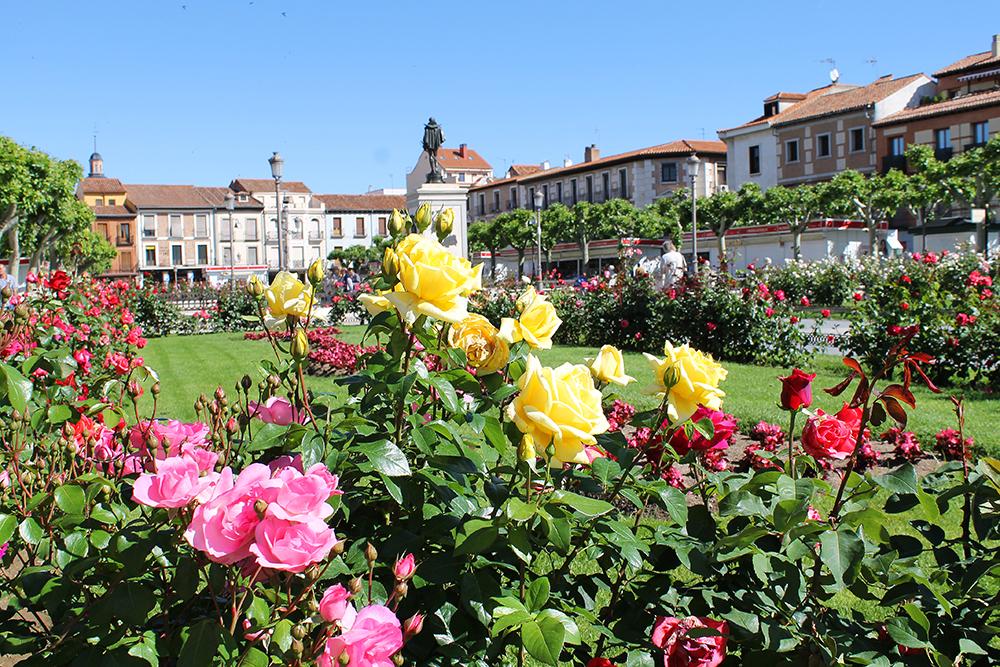 CERVANTESPLASSEN: Det fine torget i byen har vakre, fargerike blomster, en scene og mange sitteplasser. Foto: Reisebloggen Tenk Koffert