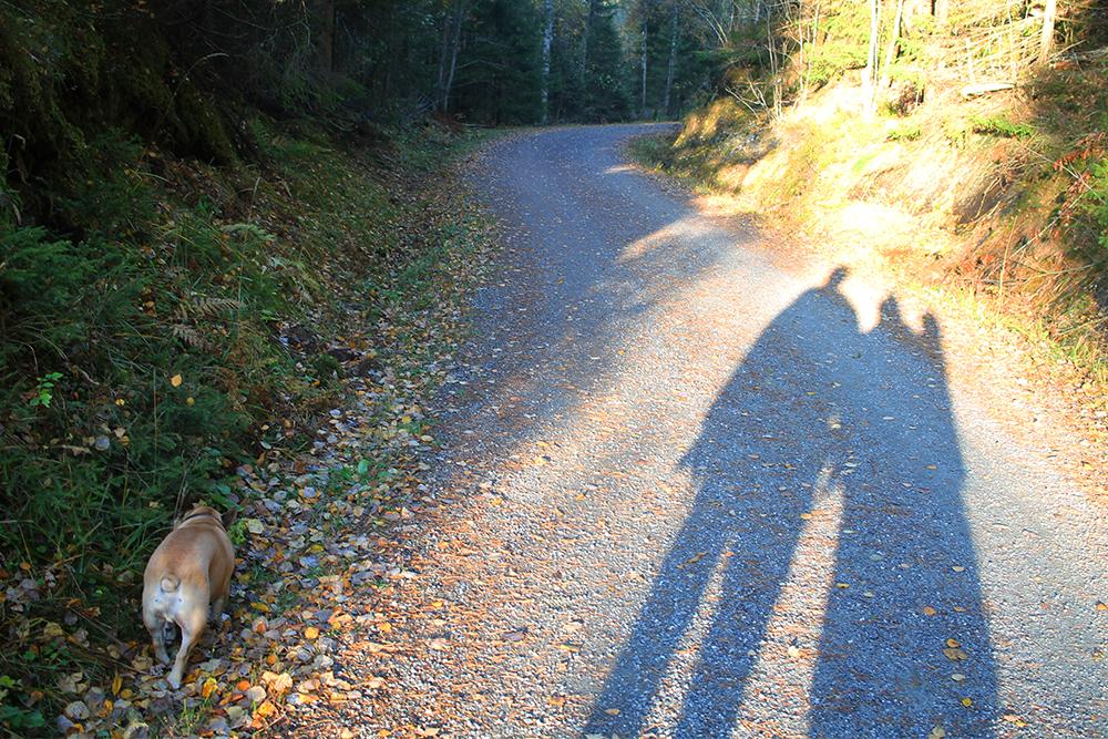 TUR FOR TRE: Koselig å dra på telttur med mann og hund. Foto: Tenk Koffert