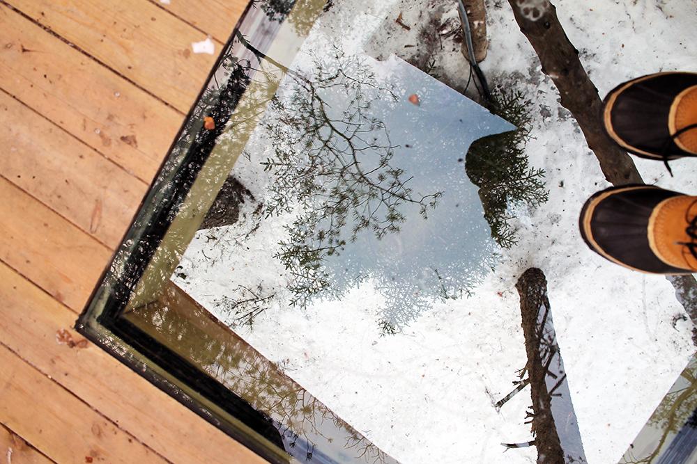 I TOPPEN AV ET TRE: Det er et vindu nedfelt i verandaen som du kan stå på. Her får du virkelig kjenne på hvor høyt oppe i lufta du befinner deg. Foto: Tenk Koffert