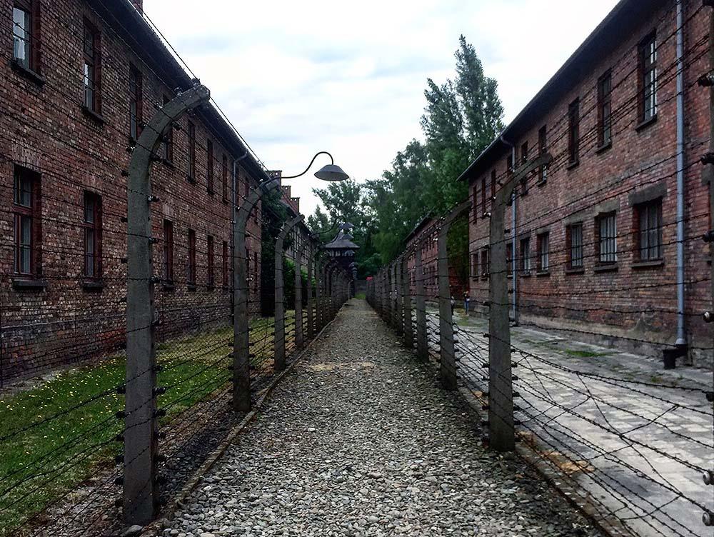 JULI: Auschwitz. Det er vanskelig å si om haugene av hår, sko og briller var det som gjorde mest inntrykk. Eller om det var synet av gasskammeret og sulte- og straffecellene som var verst. Jeg vet ikke. Men dette røsket i hjertet. 💔 Foto: Tenk Koffert