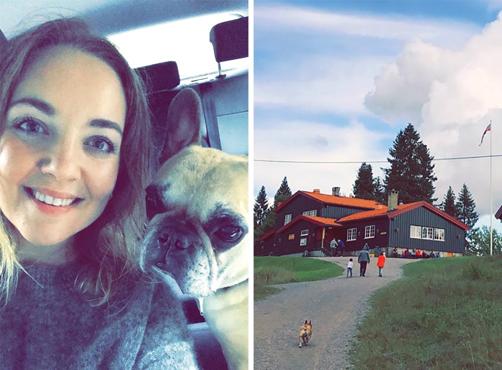 JULI: Snoopy og jeg  går turer hele året.  Her er vi en regnværsdag i juli, etter å ha gått til Lilloseter. Foto: Tenk Koffert