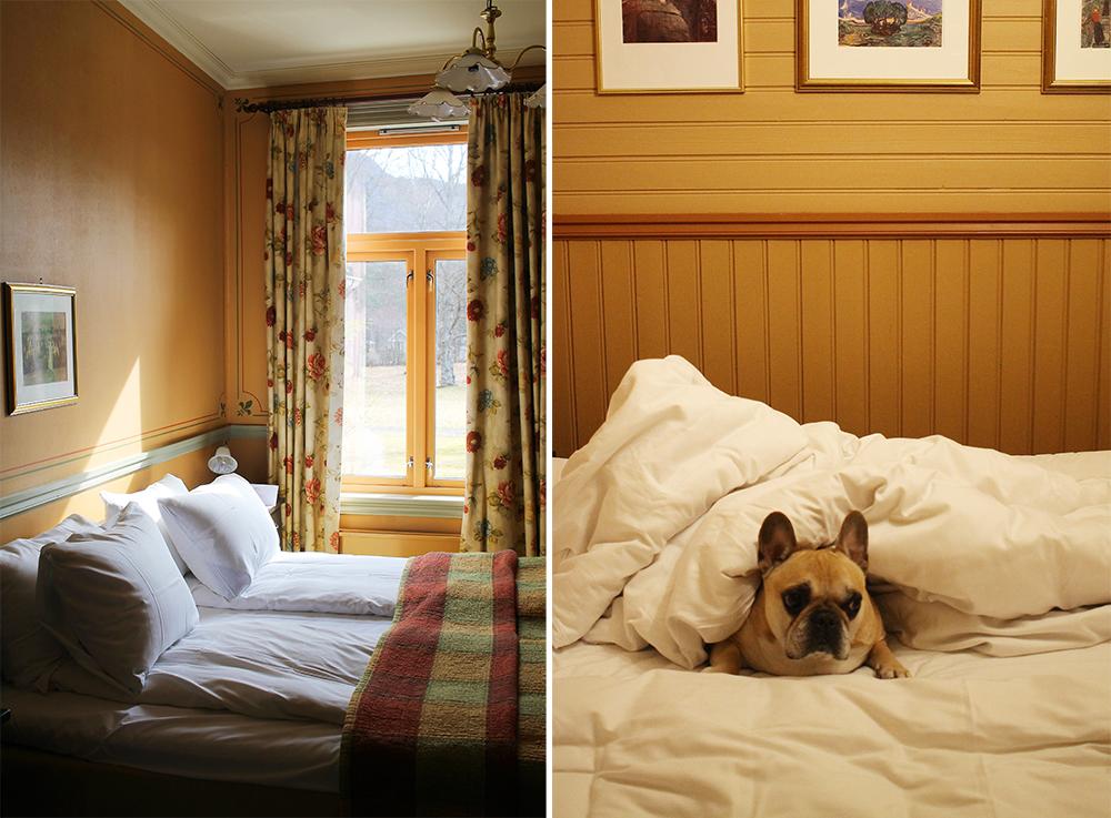 DALEN HOTEL: På Dalen er det lov å ha med hund! Foto: Tenk Koffert