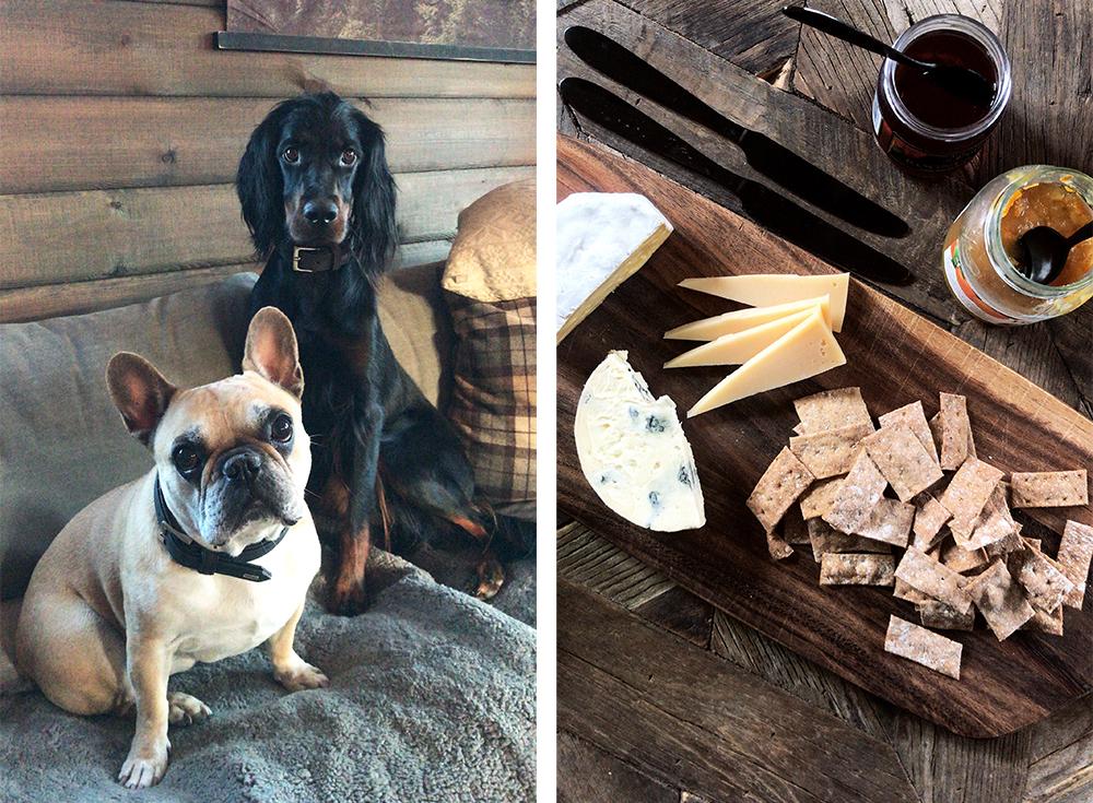 AUGUST: Hyttetur til Blefjell med verdens fineste hunder. Foto: Tenk Koffert