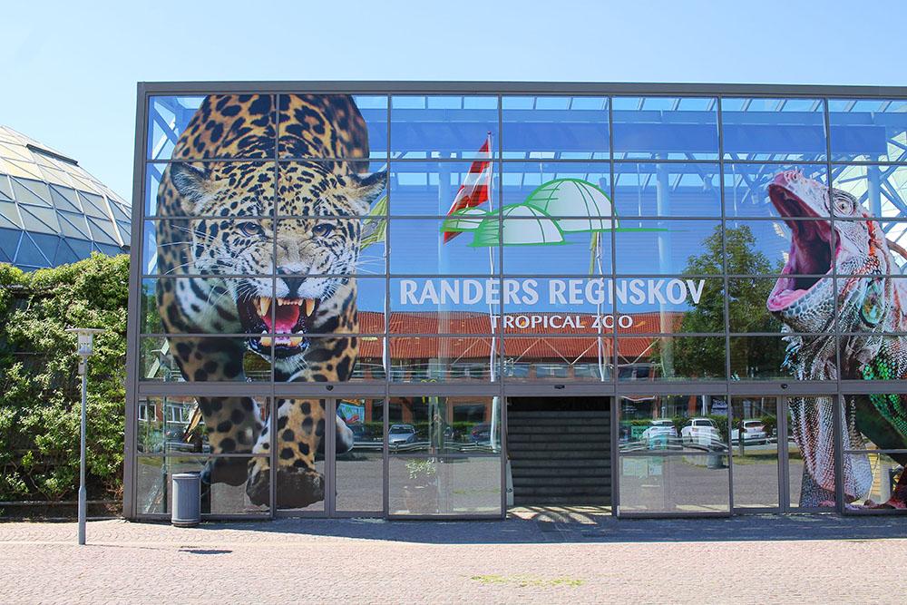 RANDERS REGNSKOV: Besøk de forskjellige verdensdelenes regnskoger - i Danmark! Foto: Tenk Koffert