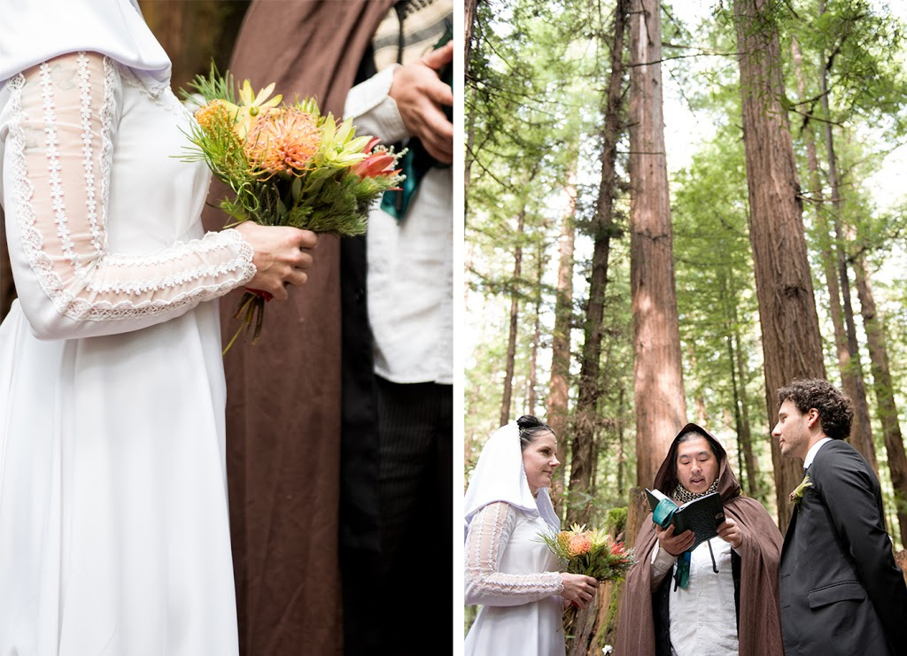 wedding photography northern california redwoods, avenue of the giants