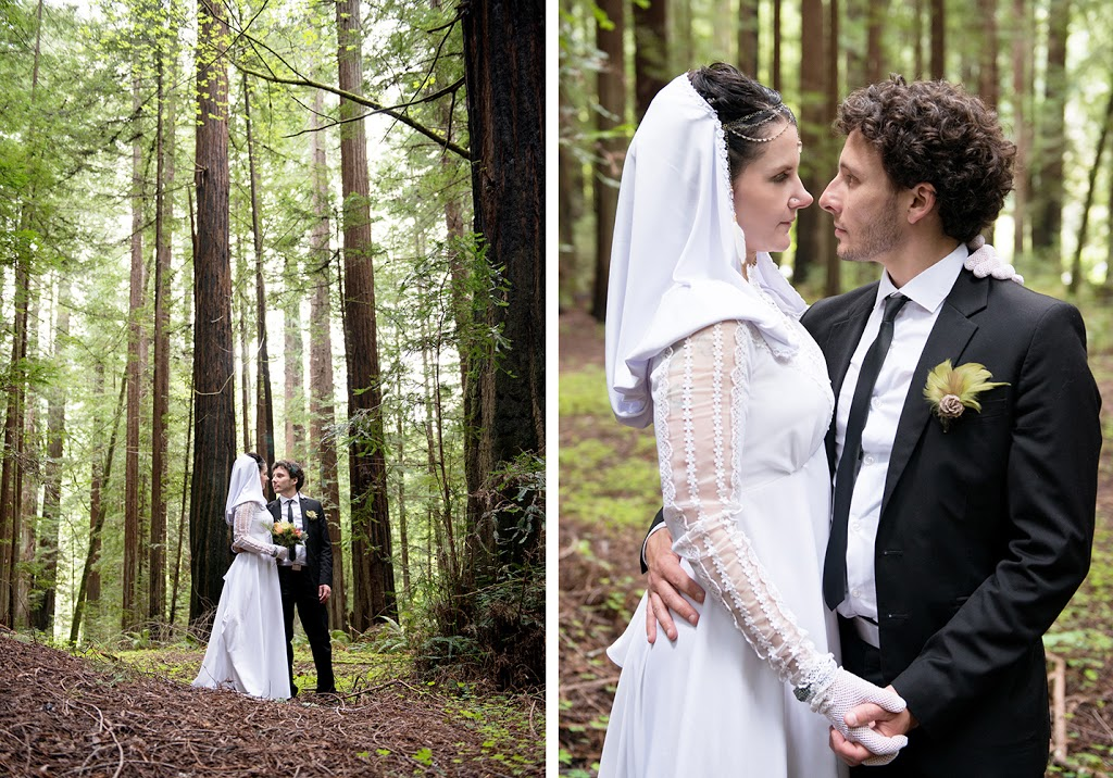 bride and groom, wedding couple in the redwoods of avenue of the giants, northern california, best wedding photography