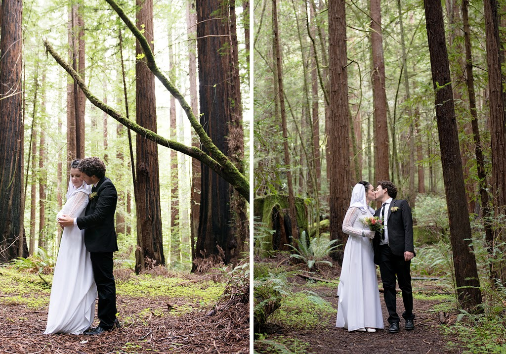 wedding photography redwoods, avenue of the giants wedding photography