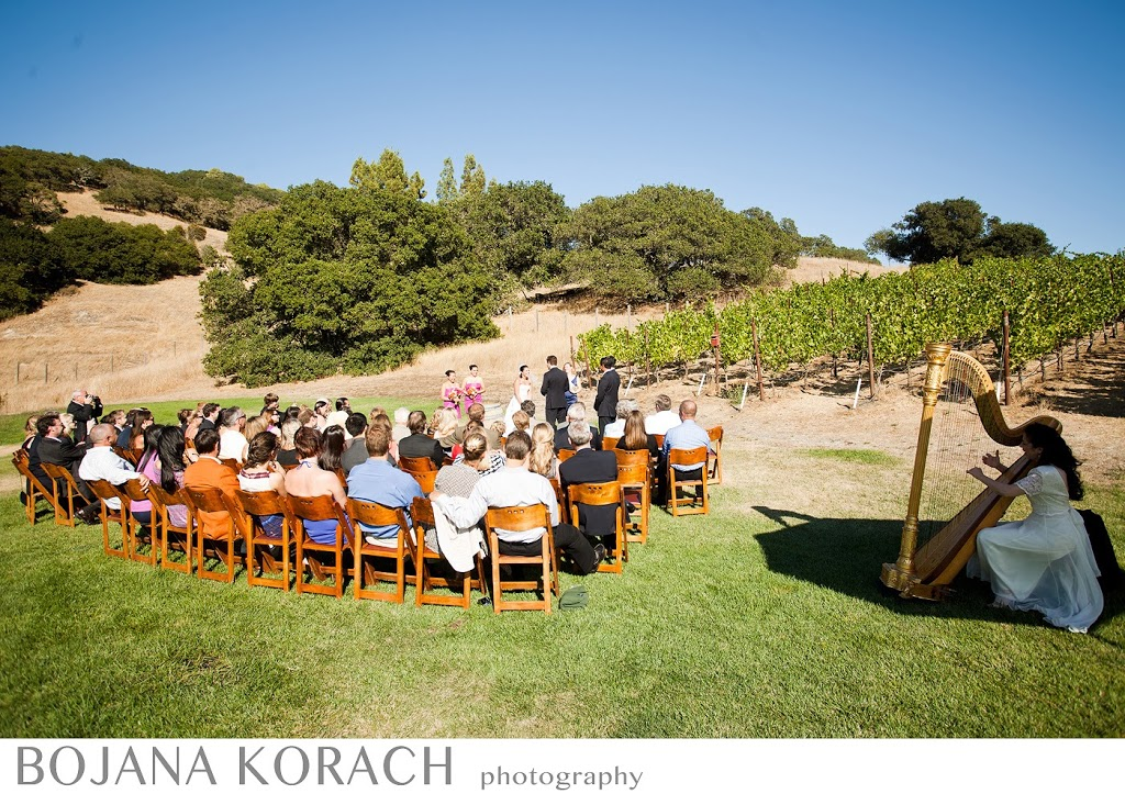 wedding ceremony at the sonoma winery, nicholson ranch, wedding photography