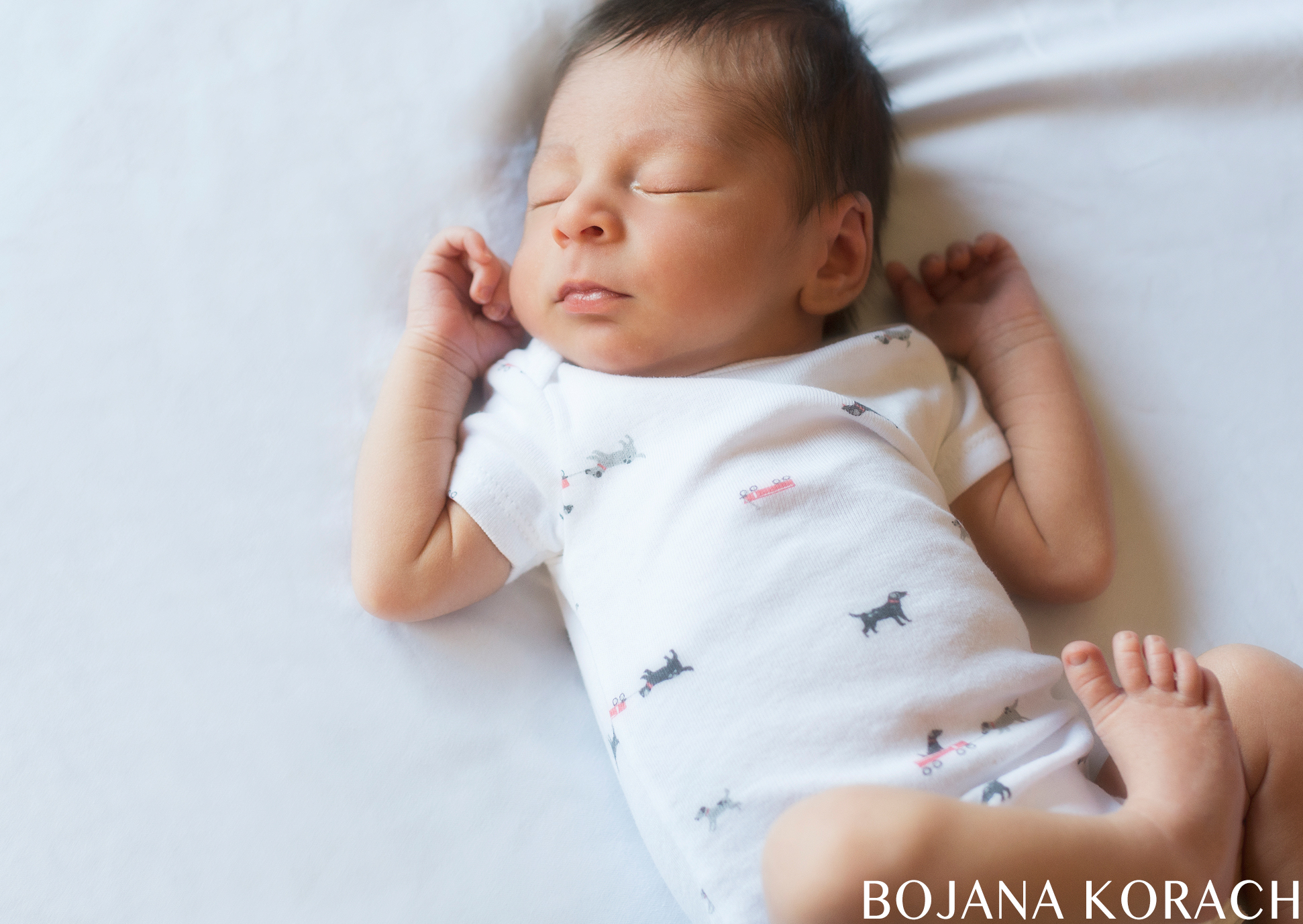 east-bay-san-francisco-newborn-photographer