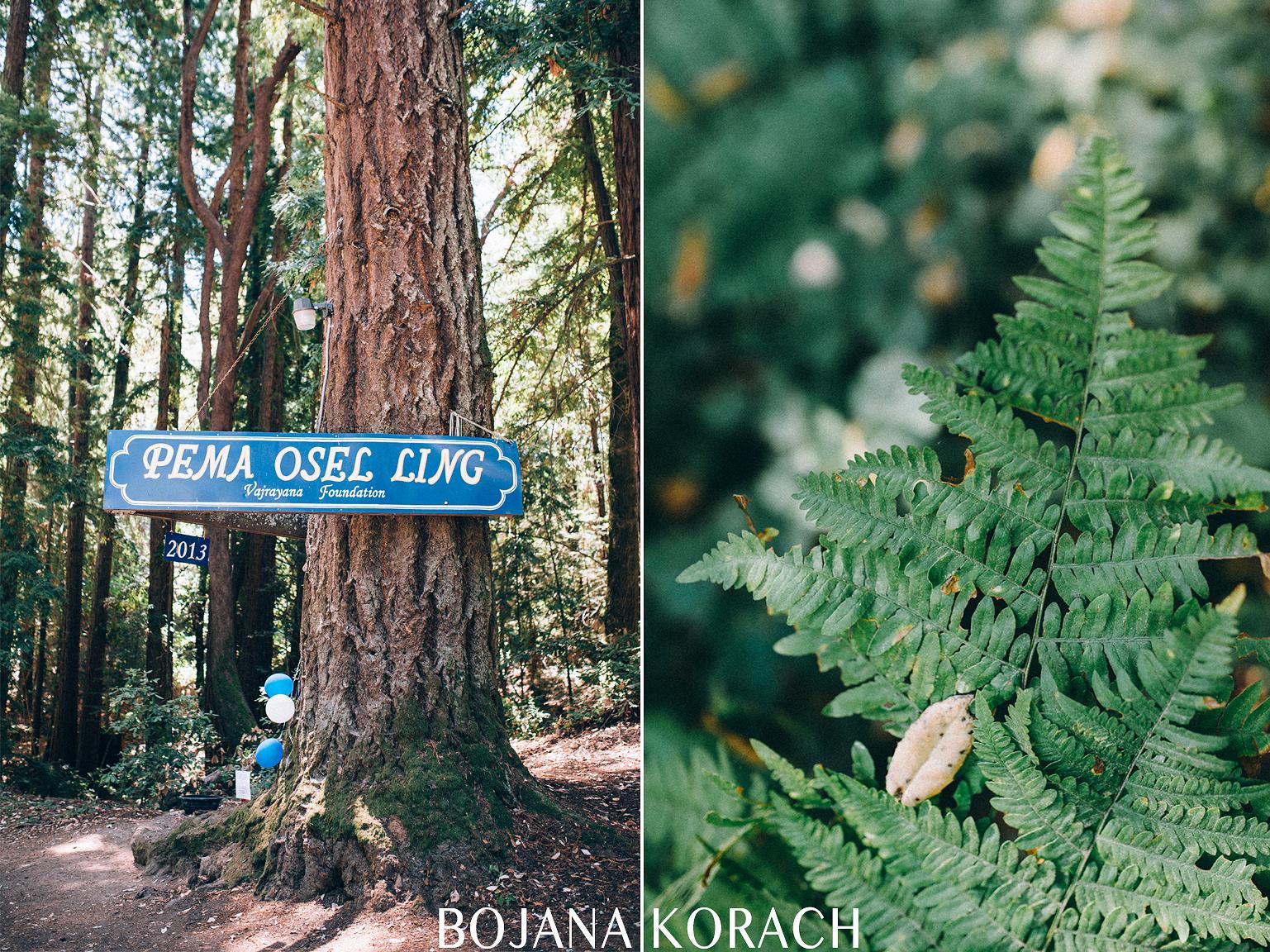 Santa Cruz Mountains Wedding Pema Osel Ling001