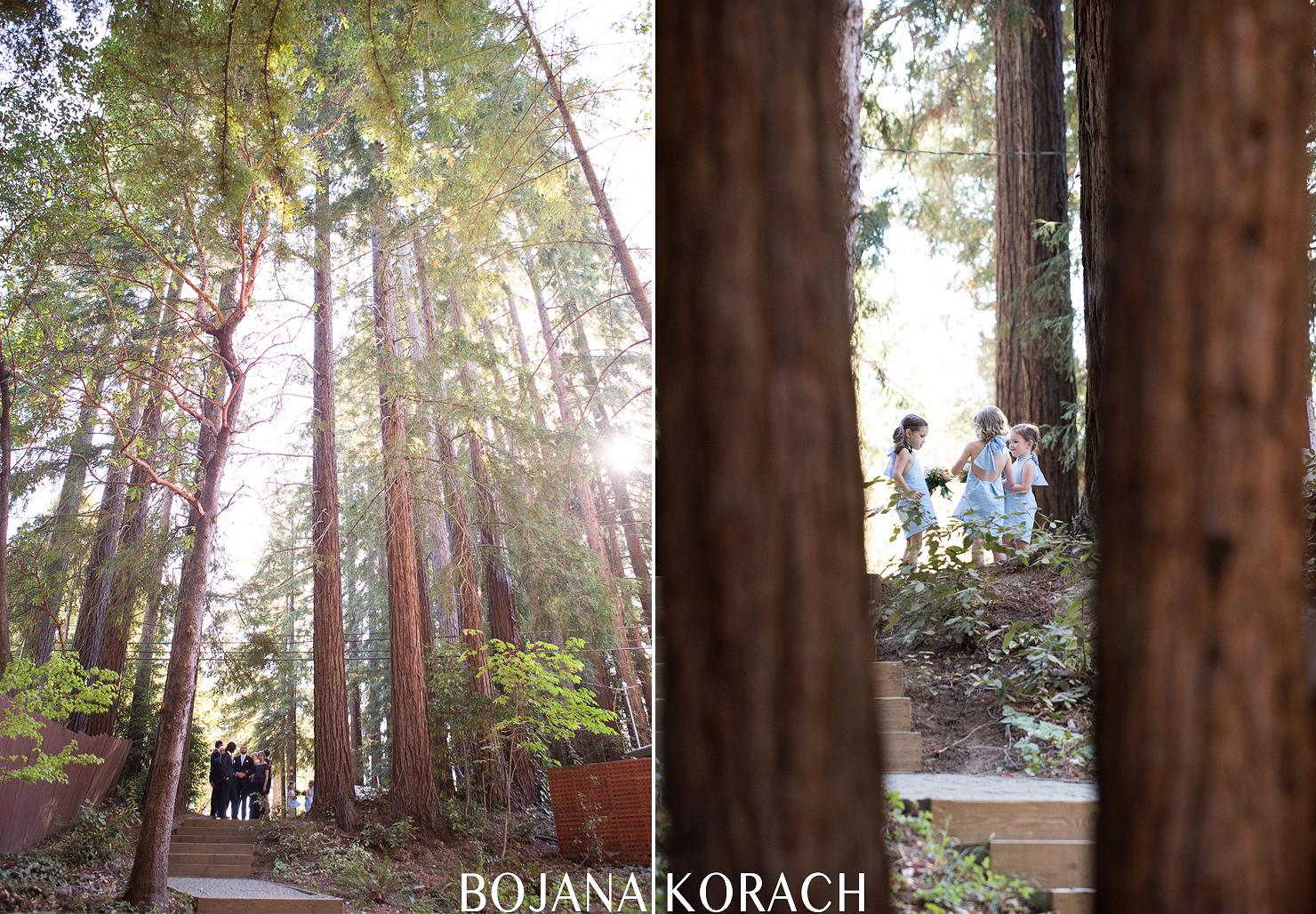 Santa Cruz Mountains Wedding Pema Osel Ling032