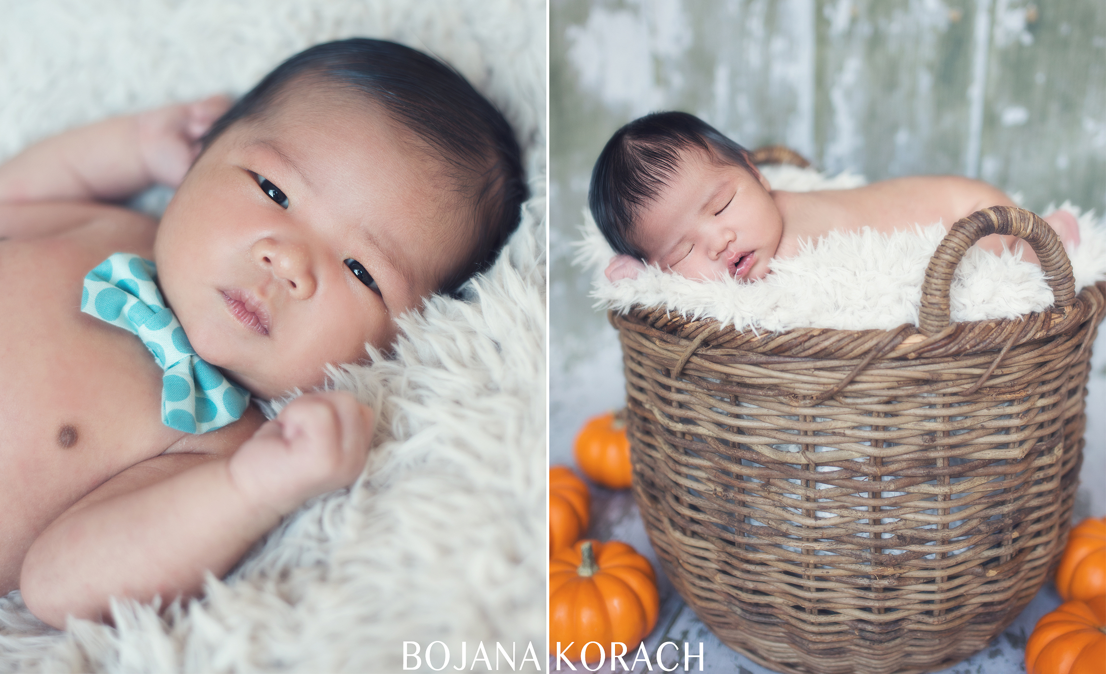 oakland-newborn-photography-4