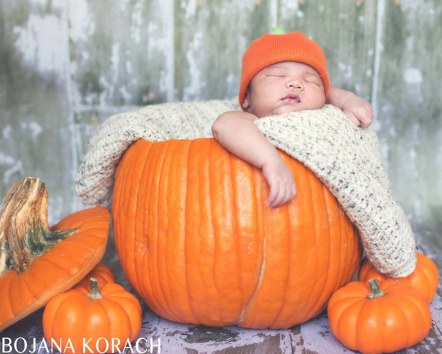 oakland-newborn-photography-in-a-pumpkin