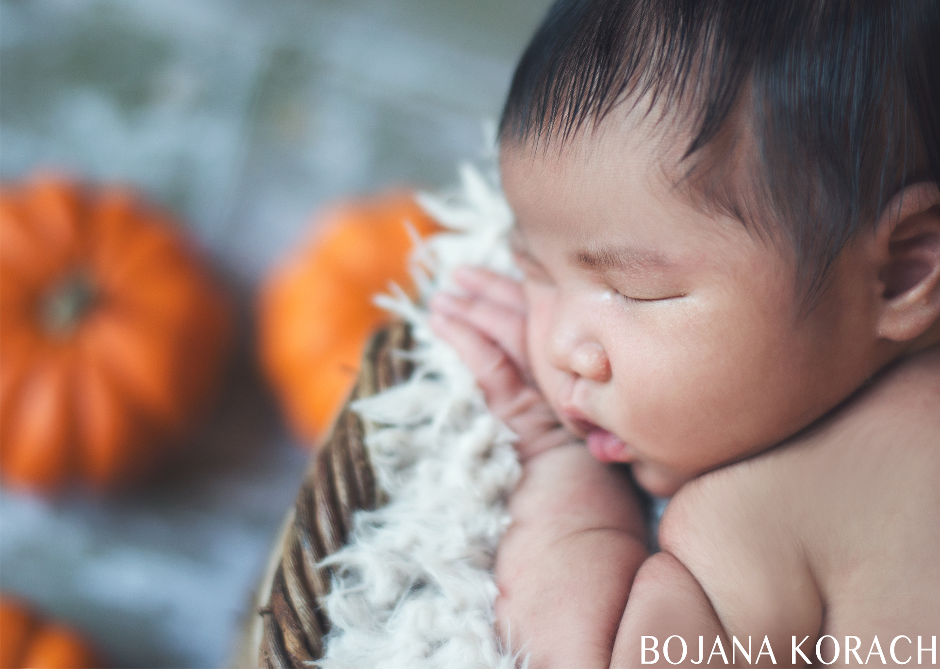oakland-newborn-photography-pumpkins
