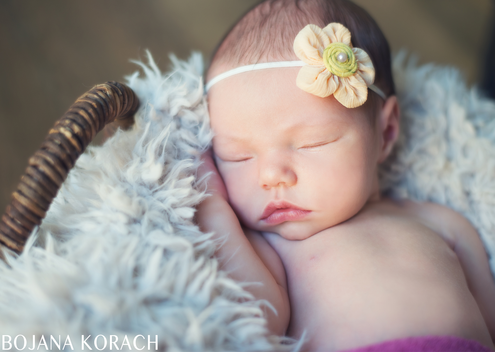 marin-county-newborn-photography-4
