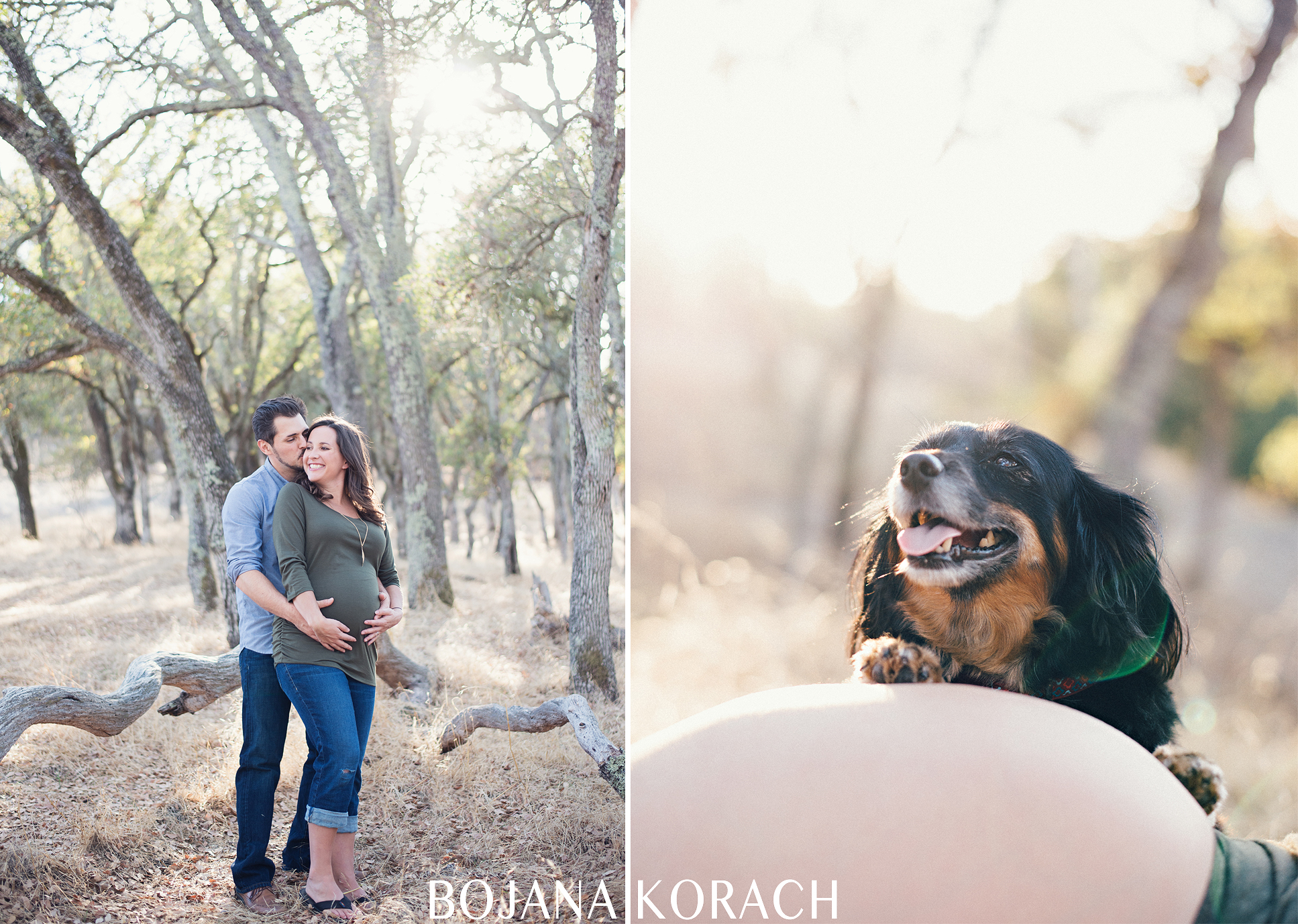 martinez-photography-maternity-dog