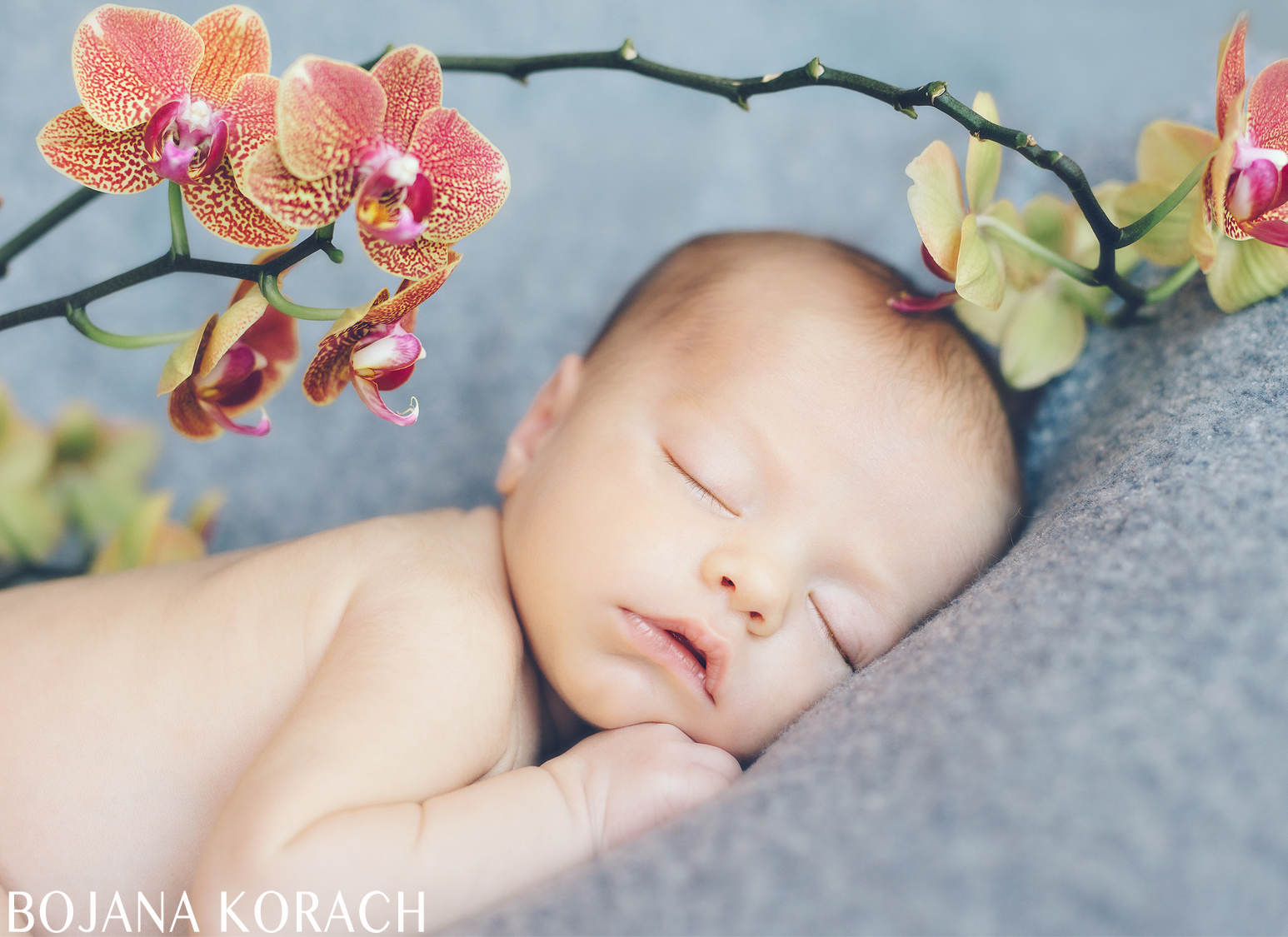 san-francisco-newborn-photography-9