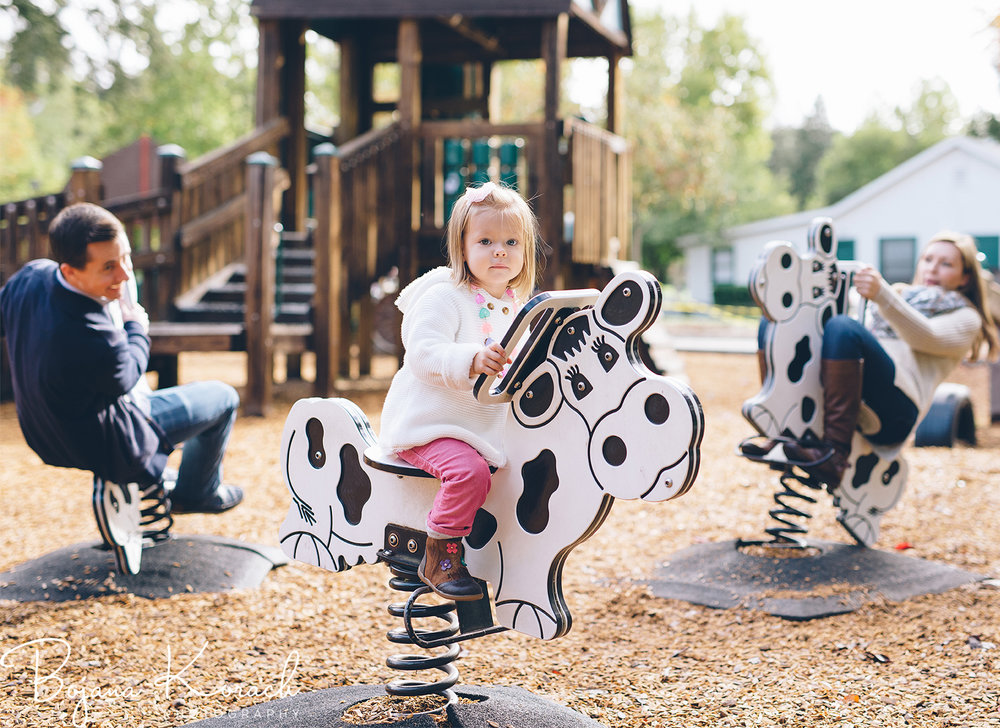 chicago family portrait on the playground cows